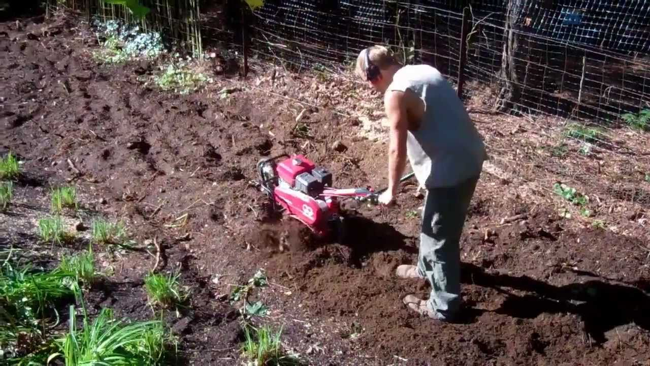 Garden-Soil-Removal